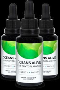oceans alive marine phytoplankton